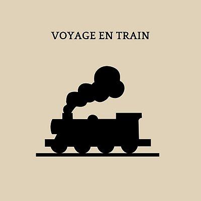 transport-chien-train