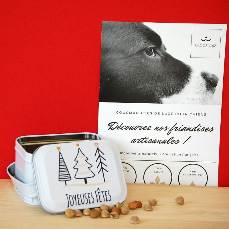 Boite-noël-biscuits-pour-chien-crocandiz